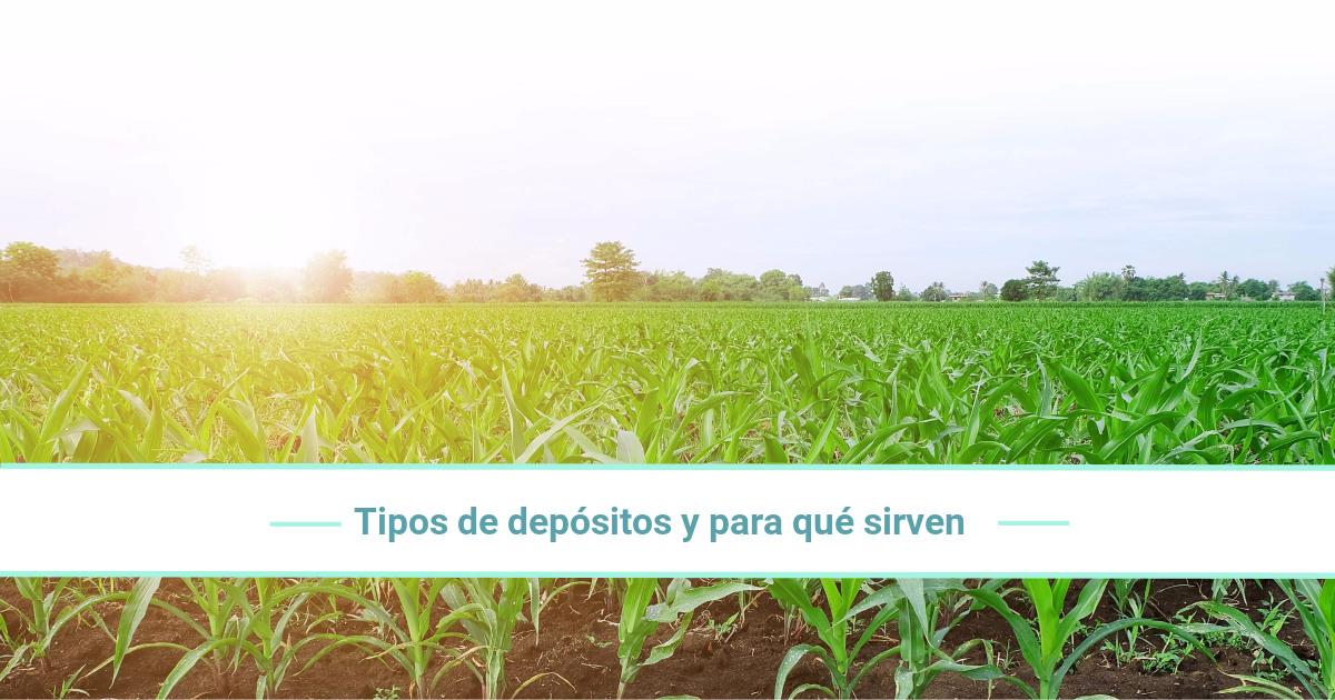 Tipos de depósitos agrícolas y para qué sirven