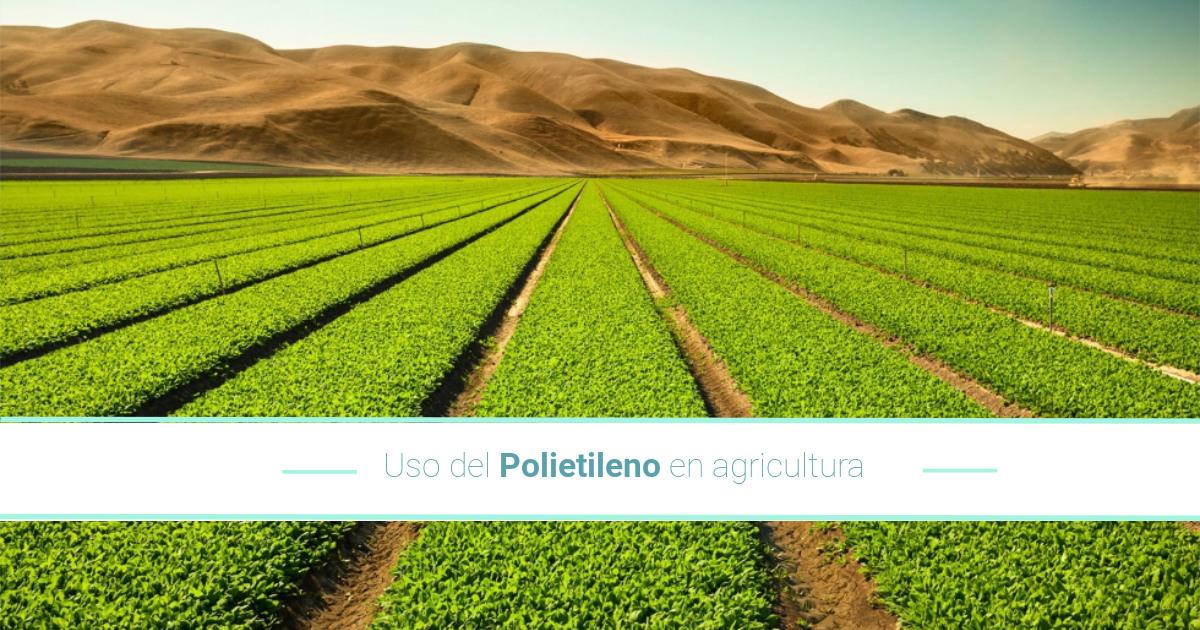 Uso del polietileno en la agricultura