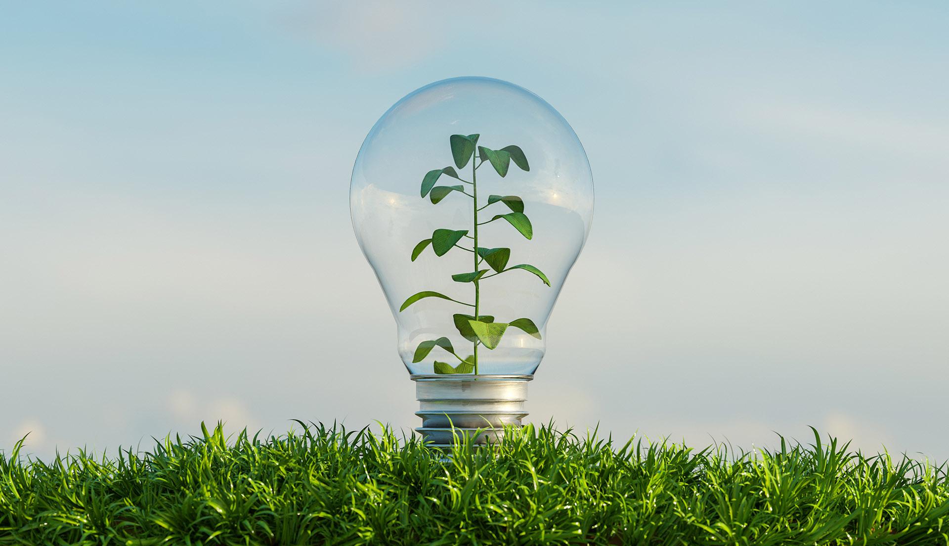 eficiencia energética en sistemas de riego